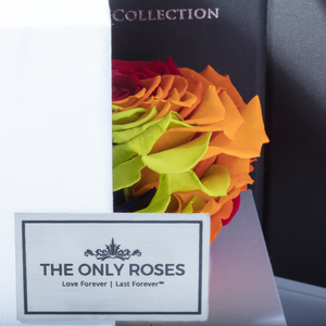 Rainbow Mega Preserved Rose | Swing Opening Box - The Only Roses