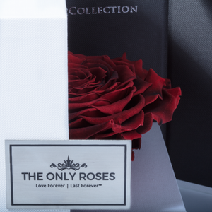 Fire Red Mega Preserved Rose | Swing Opening Box - The Only Roses