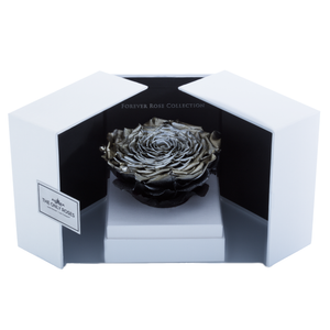 Silver Mega Preserved Rose | Swing Opening Box - The Only Roses