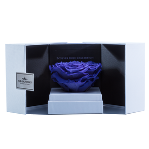 Purple Mega Preserved Rose | Swing Opening Box - The Only Roses