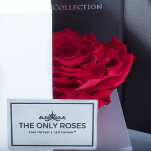 Red Mega Preserved Rose | Swing Opening Box - The Only Roses