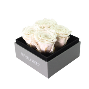 White Preserved Roses | Small Square Classic Grey Box
