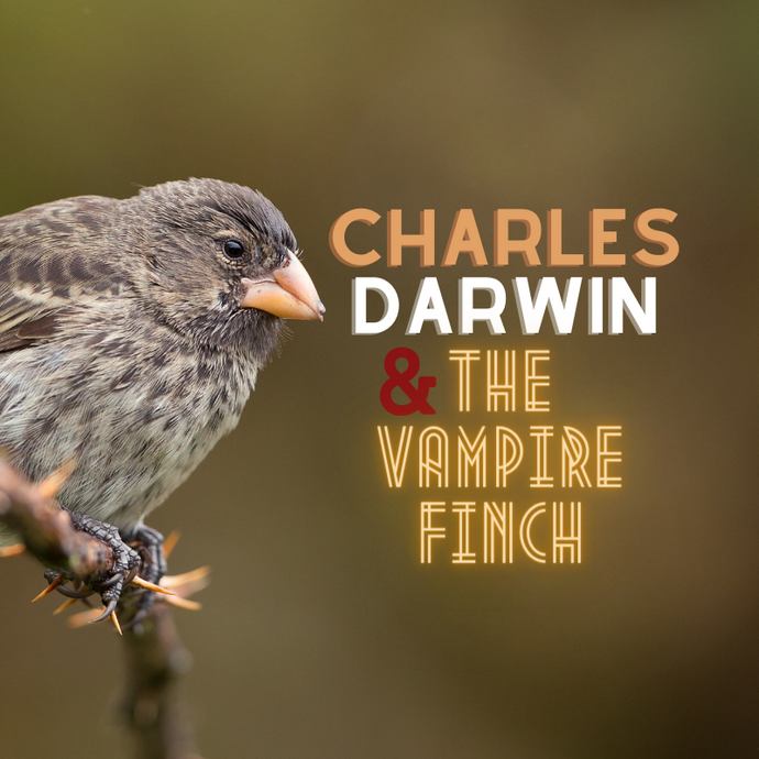 CHARLES DARWIN AND THE VAMPIRE FINCH