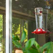 Load image into Gallery viewer, Window Hummingbird Feeder