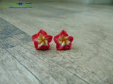 Beautiful Hawaiian Plumeria Flower Handmade Stud Earrings Red White and Yellow - GiftMo