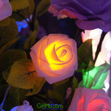 Warm Rose Flower Fairy Lights 20pcs - GiftMo