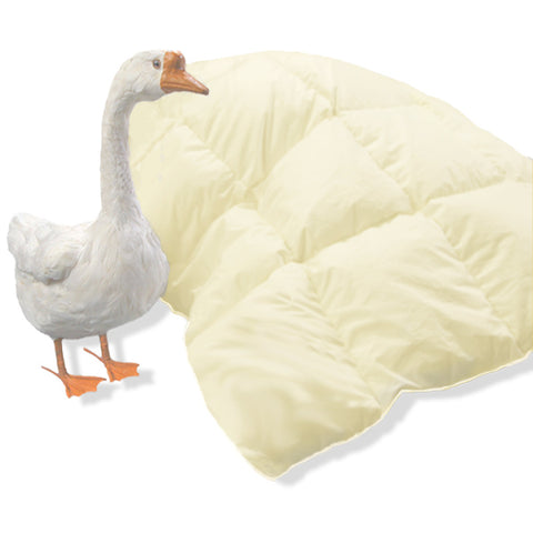 Creamy down comforter with goose