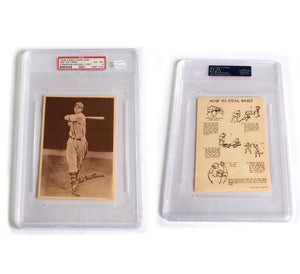 HIGHEST GRADED Ted Williams 1939 Canadian Goudey Premium Rookie Card