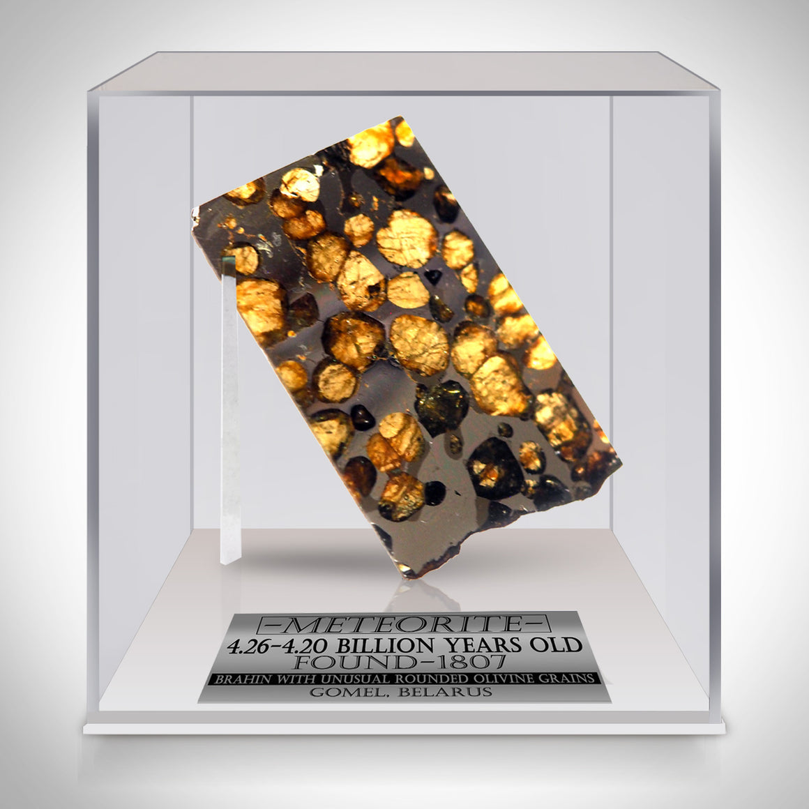 Authentic BRAHIN PALLASITE METEORITE Custom Museum Display