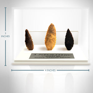 Rare-T Exclusive '3 Neolithic Arrowheads - 4000 B.C.' Museum Display