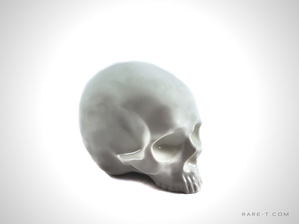 Human Skull - Money 'Piggy' Bank | RARE-T
