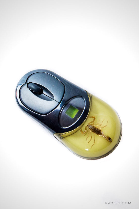 Authentic 'GOLDEN SCORPION-PALAMNAERSUS' Wireless Computer Mouse | RARE-T