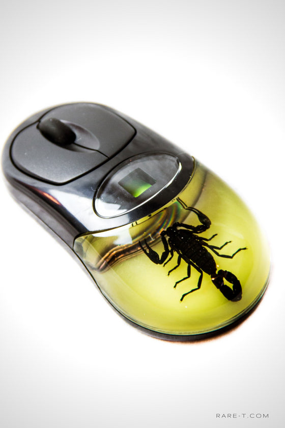 Black Scorpion Glow in the Dark Computer Mouse | RARE-T