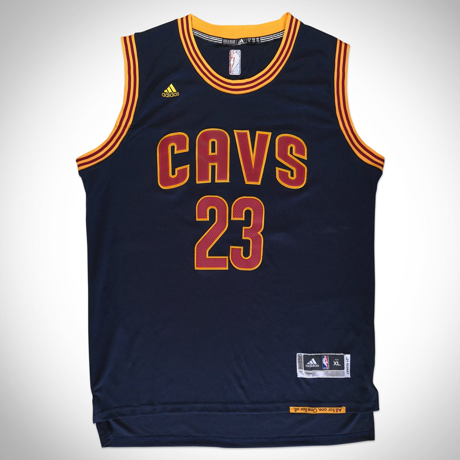 pretty nice 25686 b5aeb Lebron James- Hand-Signed Cleveland Cavaliers Blue Jersey Custom Frame