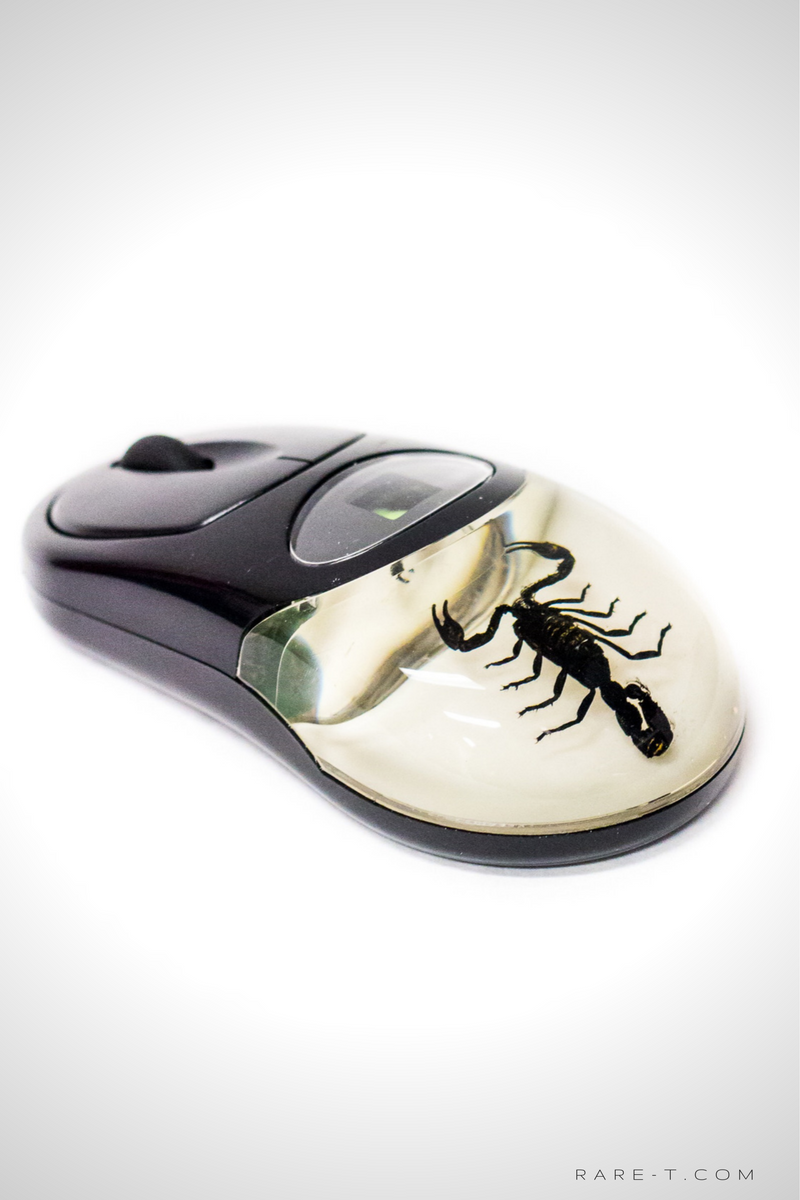 Authentic 'BLACK SCORPION' Wireless Computer Mouse