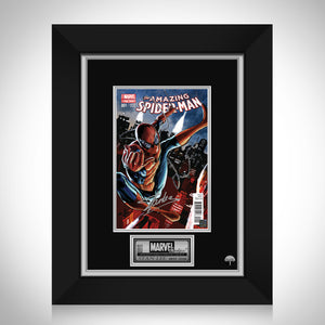 Amazing Spider-Man #1 Variant Stan Lee Limited Signature Edition Comic Book Cover Art Custom Frame
