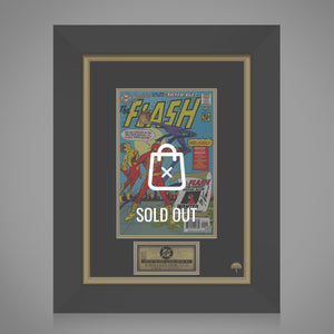 The Flash-Tale From the Silver Age #1 Hand-Signed Comic Book by Ty Templeton & Stan Lee Custom Frame