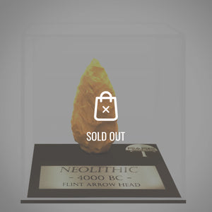 Rare-T Exclusive 'Neolithic Arrowhead - Circa 4000 Bc' Museum Display