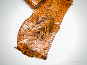 Cobra Snake Skin '57 INCH' Tanned Hide/Leather