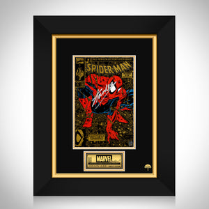 Spider-Man Torment #1 Stan Lee Limited Signature Edition Licensed Comic Book Cover Art Custom Frame