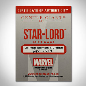 Guardians Of The Galaxy - Vintage 2014 Gentle Giant Limited Edition Star-Lord Bust Statue