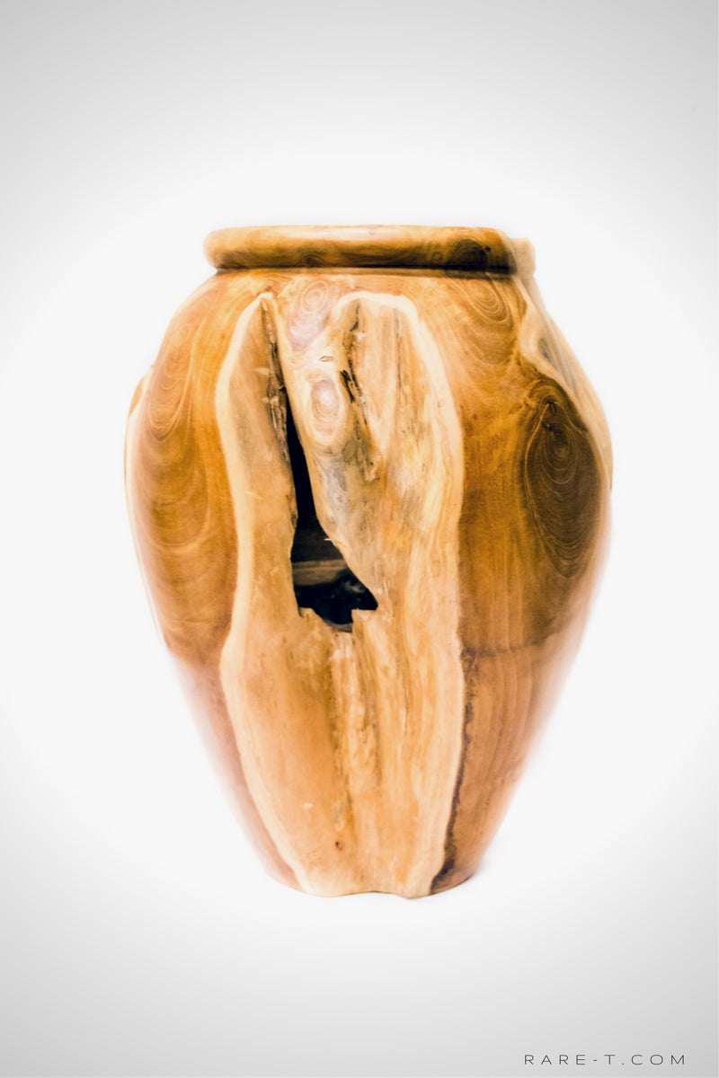 RARE-T | Hand-Sculpted 'RECLAIMED TEAK ROOT' Folk-Art Vase