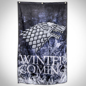 Game Of Thrones - Winter Is Coming Banner