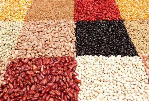 A large variety of beans