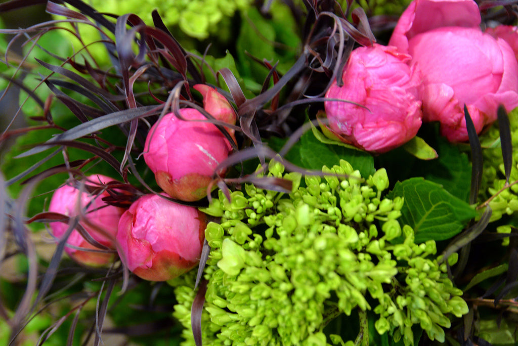 It's Finally Spring! Learn About Some of our Favorite Flowers This Season With our Head Florist, Melissa McCaughey!