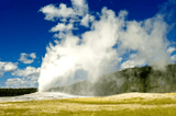 Top 3 Reasons to Go to Yellowstone National Park