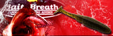 "Bait Breath T T Shad 2.8"" #S848"