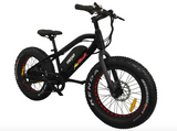 Addmotor MOTAN M-50 Electric Fat Tire Bike 36V 500W Electric Fat Tire Bikes - Electric Bike City