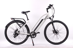 CitzBlitz E-Step 36V Electric City Bike
