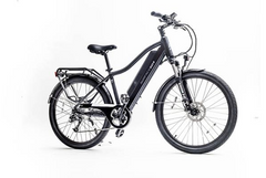 Surface 604 Colt 48V Electric City Bike
