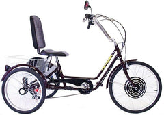 Belize Bike Comfort Tri-Rider Bicycle (Electric Motor Option Available)