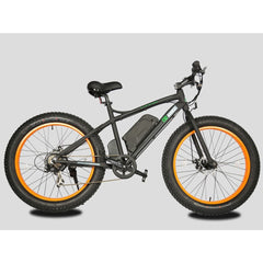 Electric Fat Tire Bikes - E-Go Bike USA 500W Fat Tire Beach Snow Electric Bike