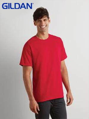 Gildan Ultra Cotton Adult T-Shirt (2000) 2nd color