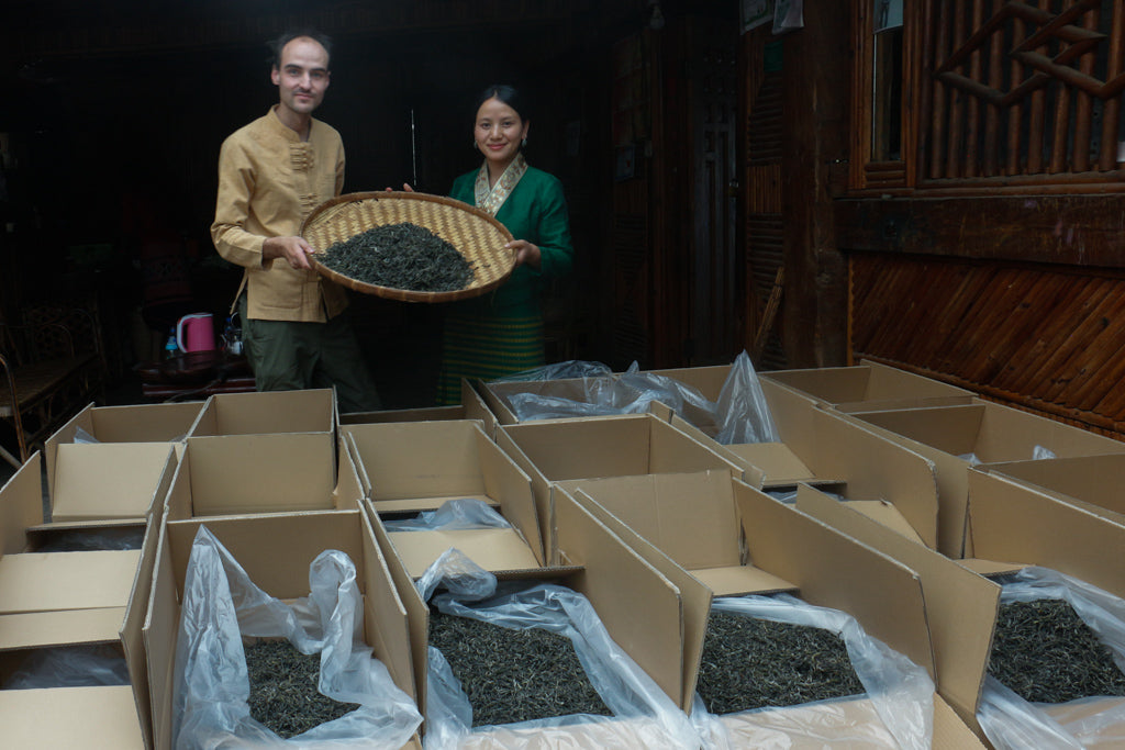 Yubai and William with their Spring 2020 Jingmai Pu-erh harvest