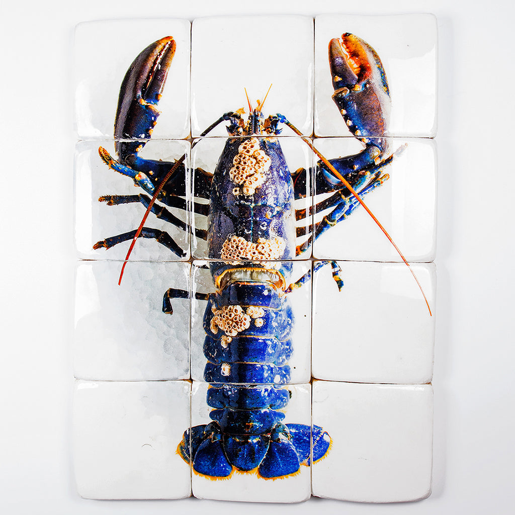Coral European lobster,12R