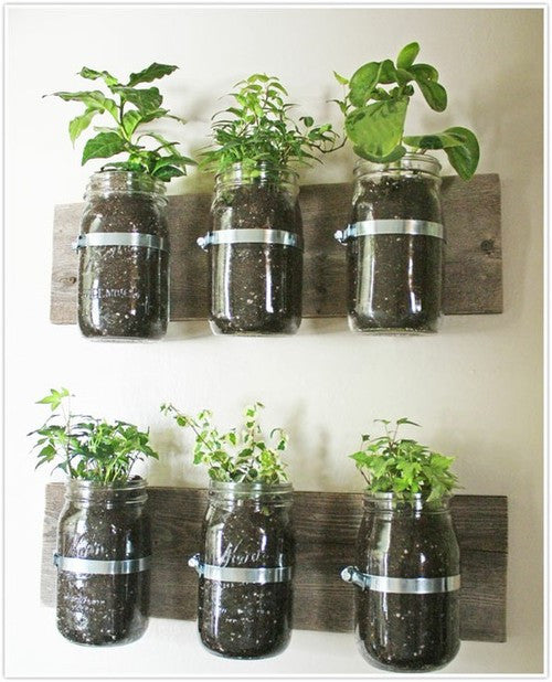 Indoor Gardening Solutions For Small Spaces