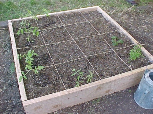 Square Foot Gardening: Space-Friendly Outdoor Gardening