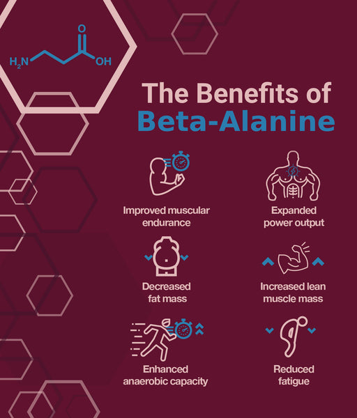 Beta Alanine Benefits