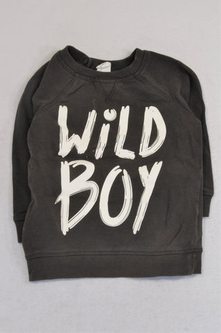 H&M Grey Wild Boy Pull Over Top Boys 18-24 months