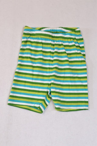 Gymboree Green & Blue Thin Stripe Shorts Boys 2-3 years