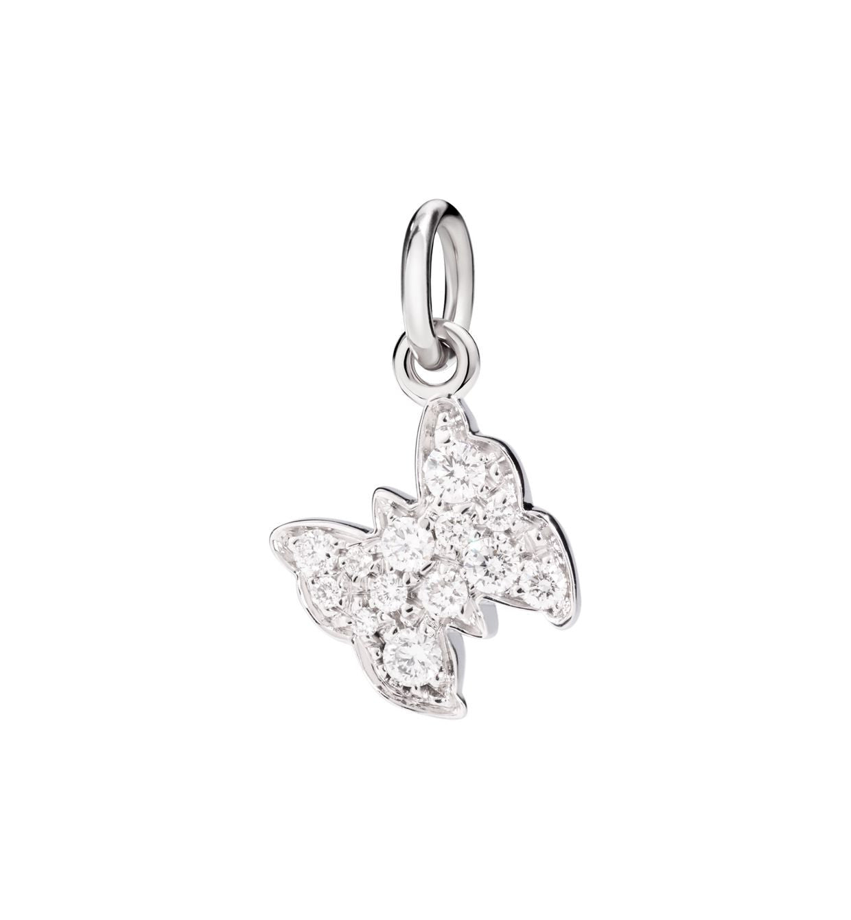 DoDo Butterfly in 18kt White Gold with Diamonds - Orsini Jewellers NZ