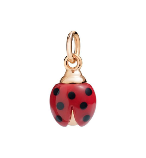 "Dodo Ladybird charm ""Lucky me to have you"""
