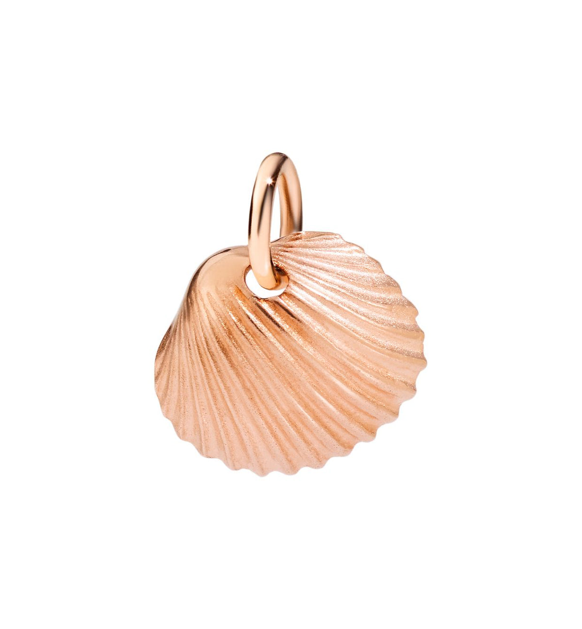 DoDo Shell in 9k Rose Gold - Orsini Jewellers NZ