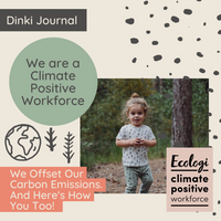 Dinki Human is a climate positive workforce. Here's how you can offset your carbon emissions.