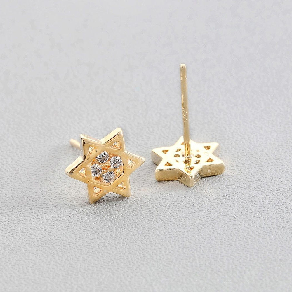 Holocaust Remembrance Earrings
