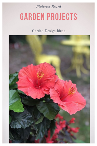 Garden Design Project Ideas
